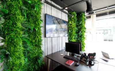 THE IMPORTANCE OF BIOPHILIC DESIGN IN THE WORKPLACE.
