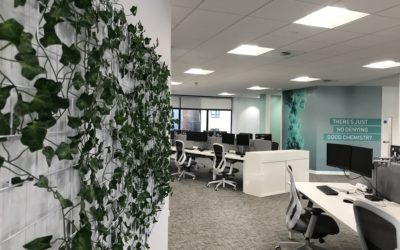THE IMPORTANCE OF SUSTAINABILITY IN THE WORKPLACE.